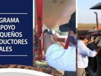 programa apoyo rural intendencia treinta y tres
